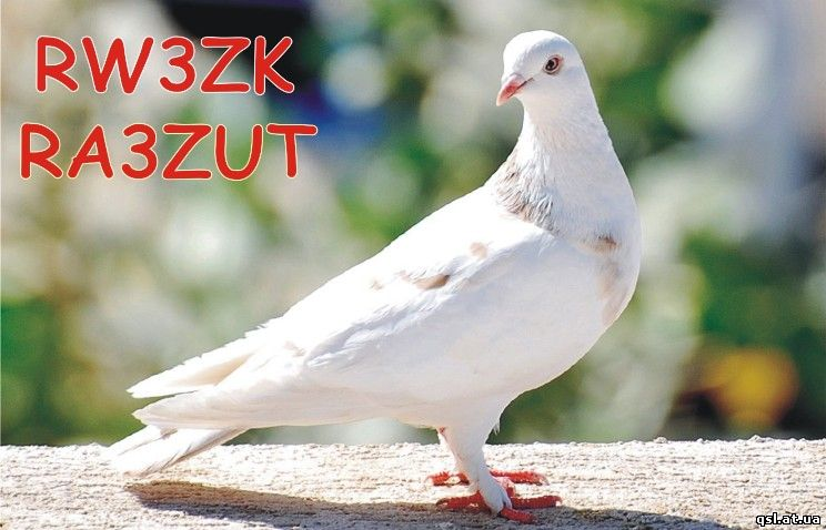 http://qsl.at.ua/Gallery2/RW3ZK.jpg